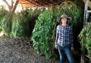 Noelle standing in front of strings of drying cannabis plants